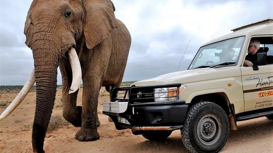 4 x 4 safaris with Alan Tours