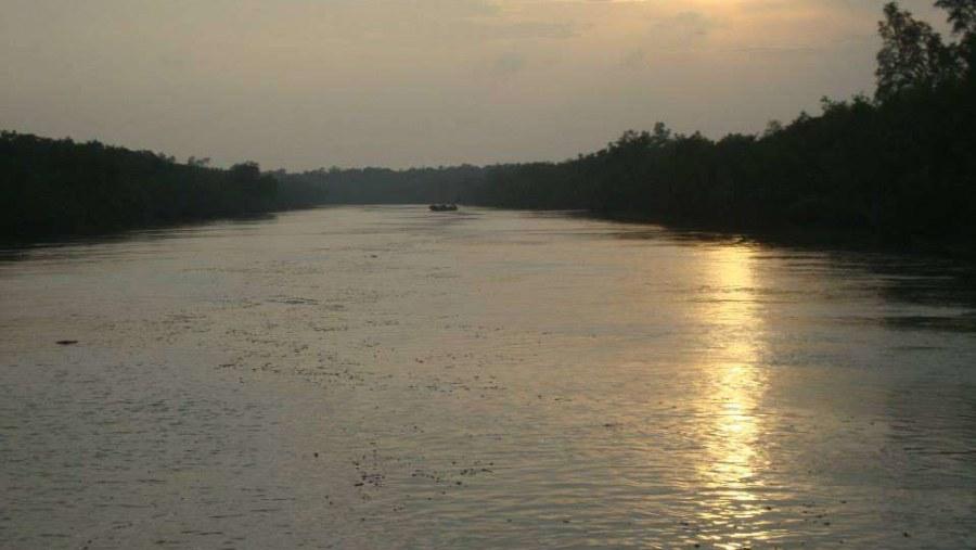 Beautiful Sunset of Sundarban