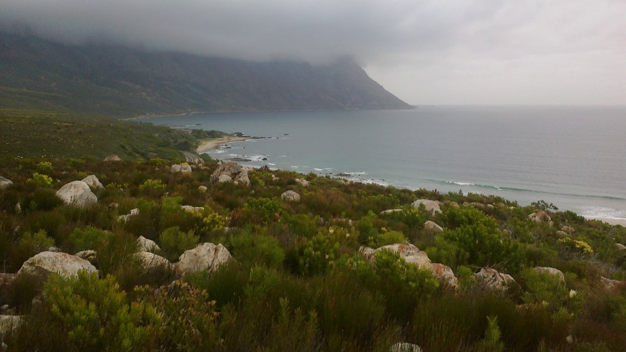 How we explored the Kogelberg Nature Reserve