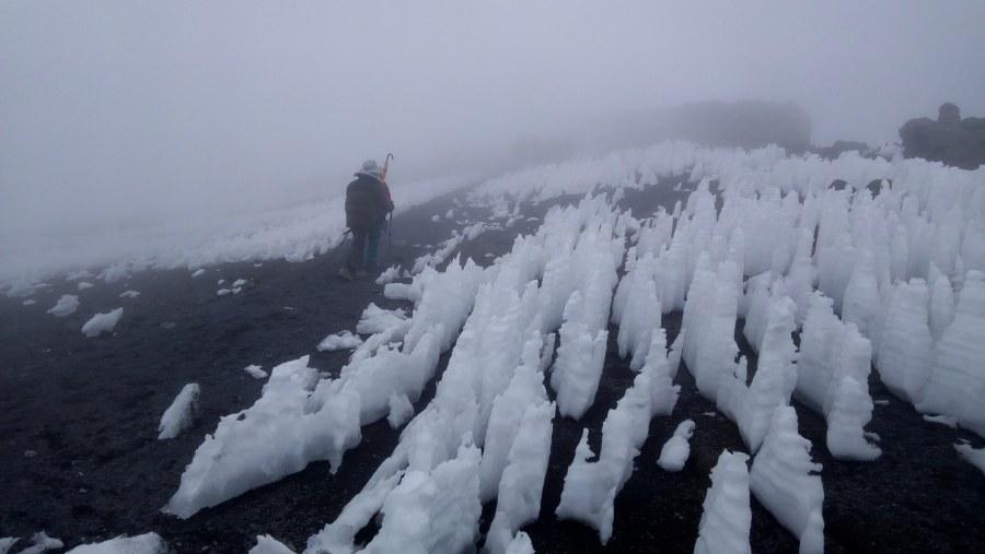 Climb mount Kilimanjaro via Lemosho route.