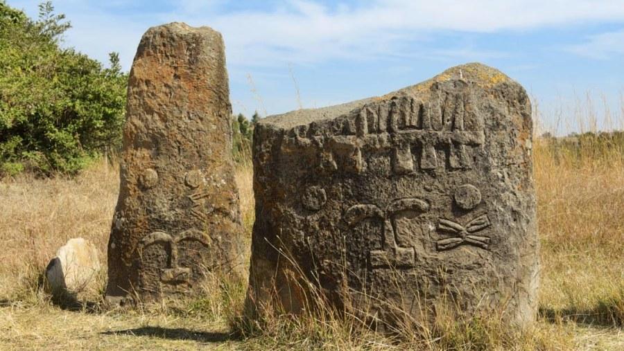 Tiya megalithic stones