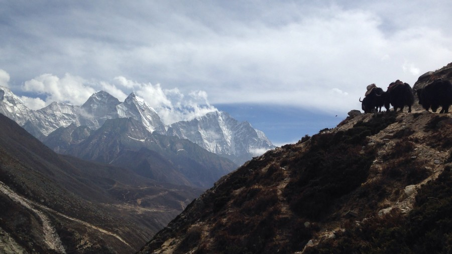 Everest Base Camp Treck Review