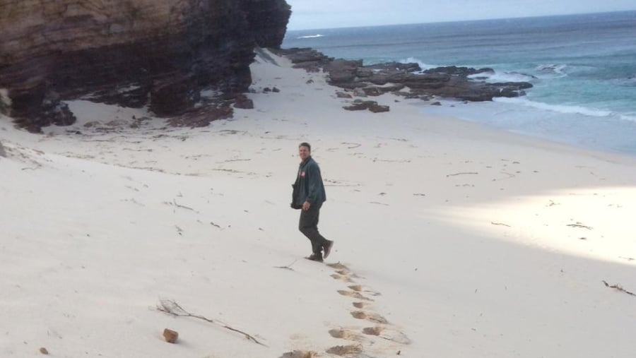 Geology of the Cape Peninsula and Boland