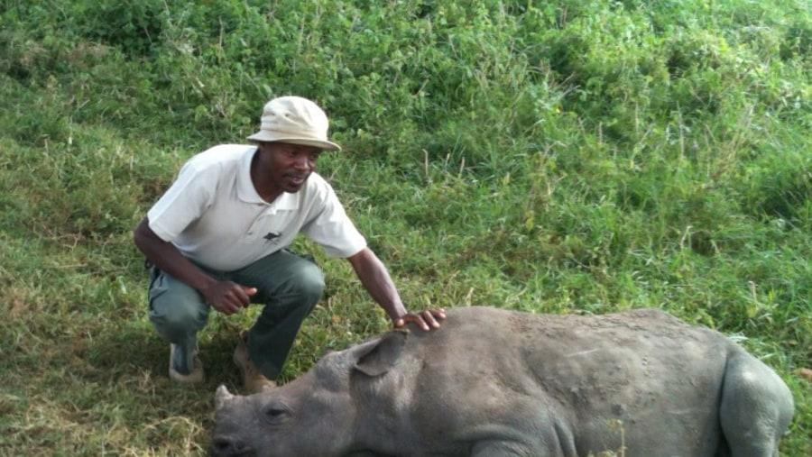 Adopting a Rhino