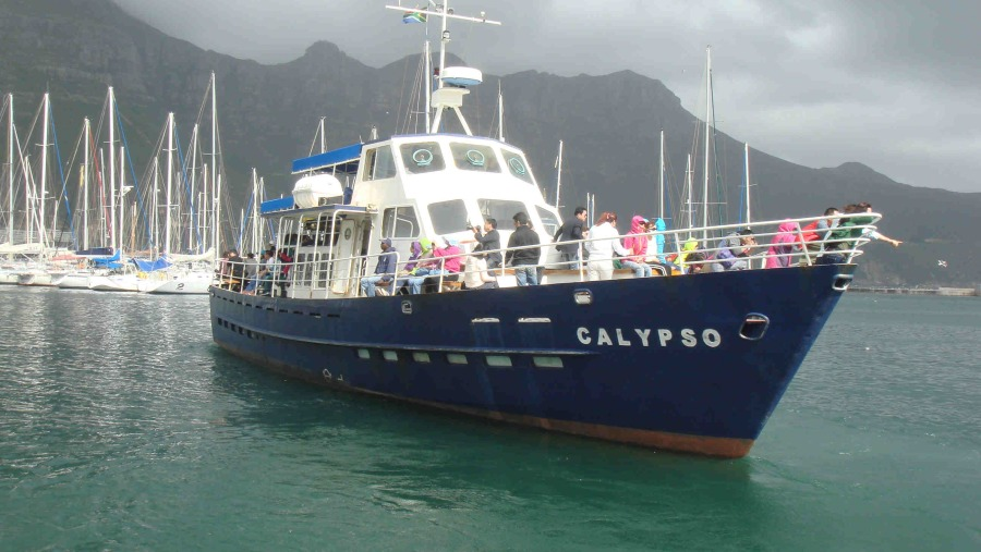 Hout Bay (Boat trip to the seals)