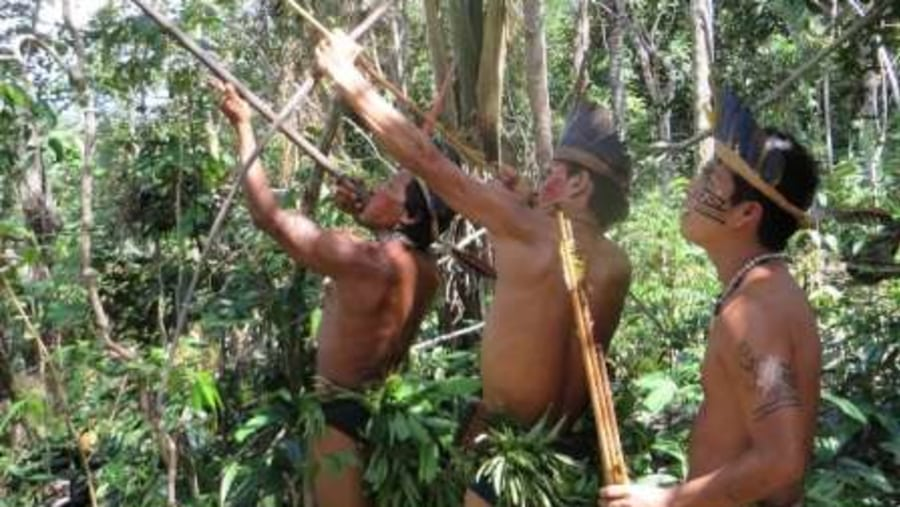 Hunting in the Amazon