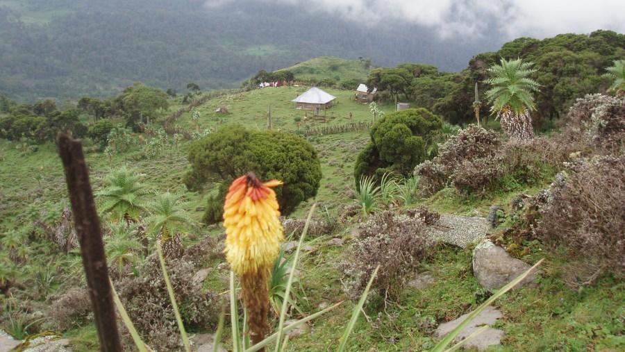 Semien Mountain