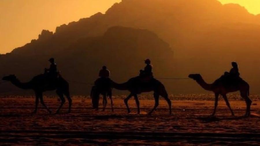 camel sunset caravan tour