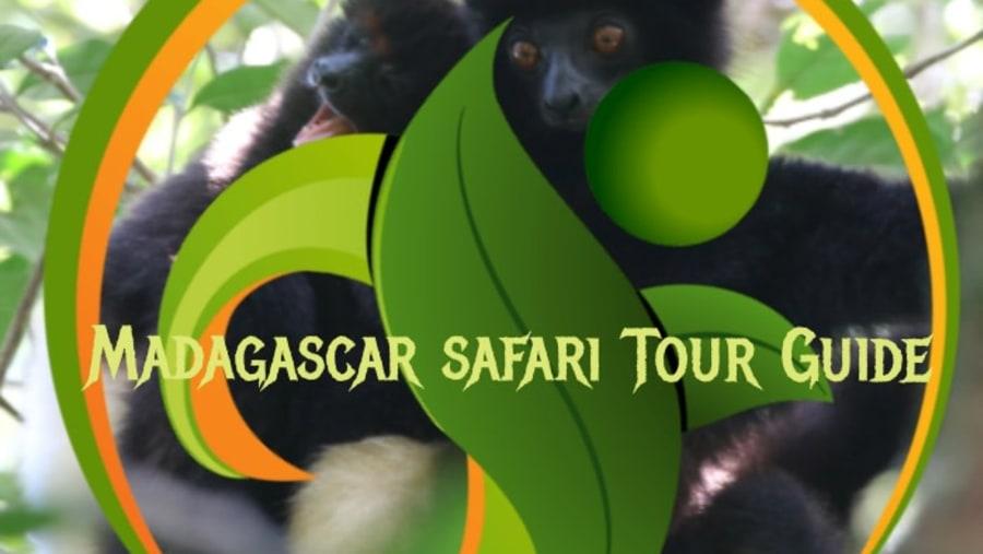 Madagascar Safari Tour Guide