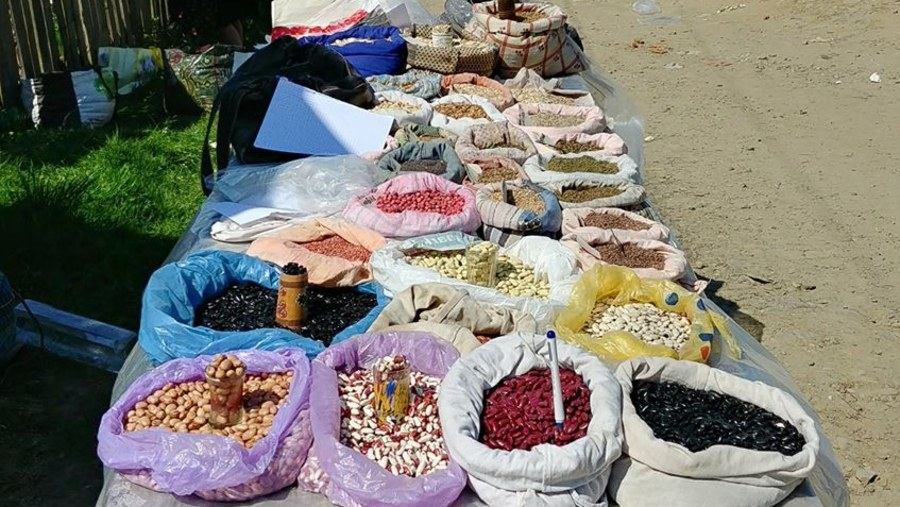 Spices and beans from a traditional village market