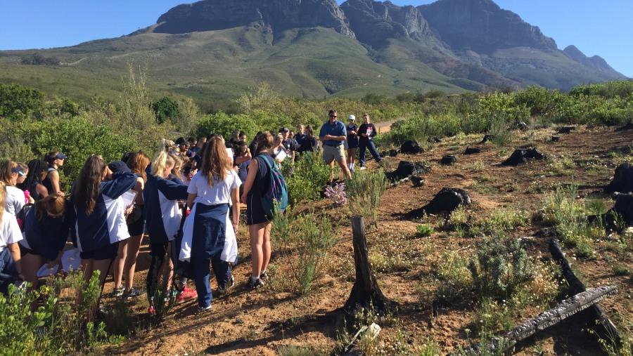 Excellent fynbos guide
