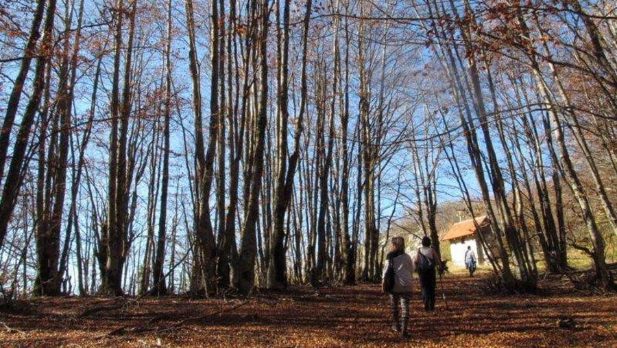 Lazaropole, Mavrova'yu Debre'yle bağlayan yolunun yakınında cennet gibi bir köy.