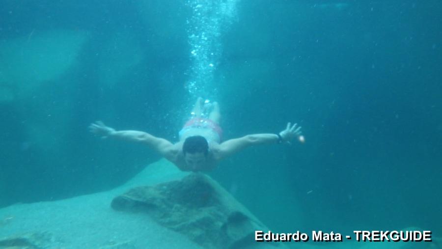 Eduardo Mata