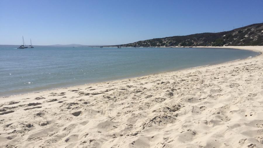 Beautiful beach on the West Coast