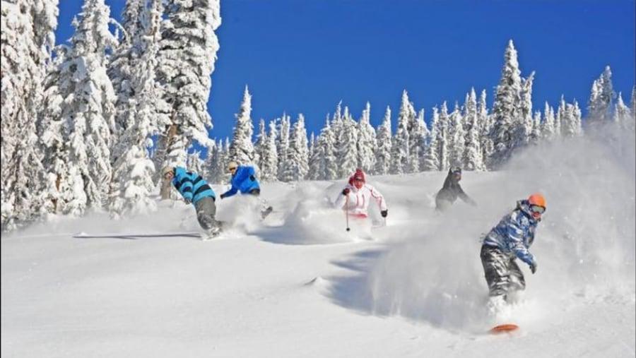 Brezovica, Skiing and Winter Sports