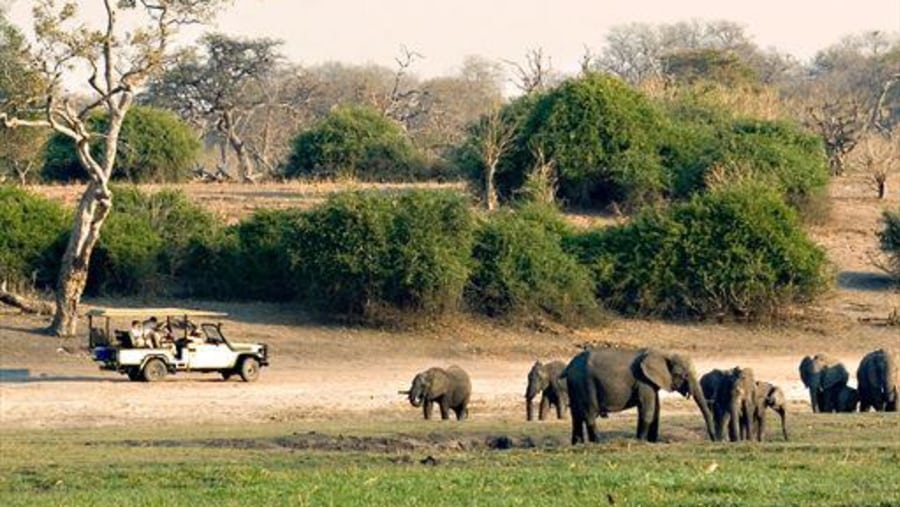 Selouse National Park