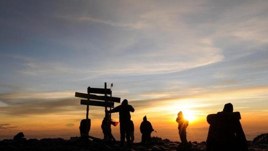 Trekking Mt. Kilimanjaro