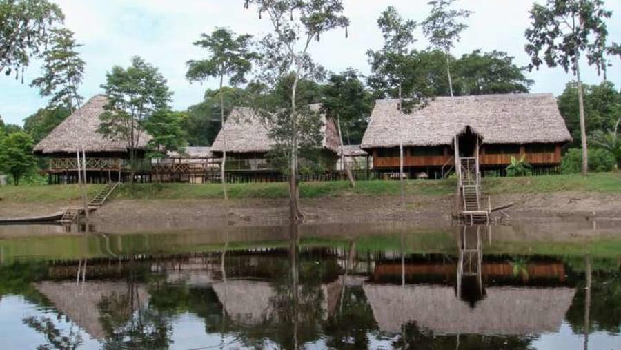 The Jungle Camp
