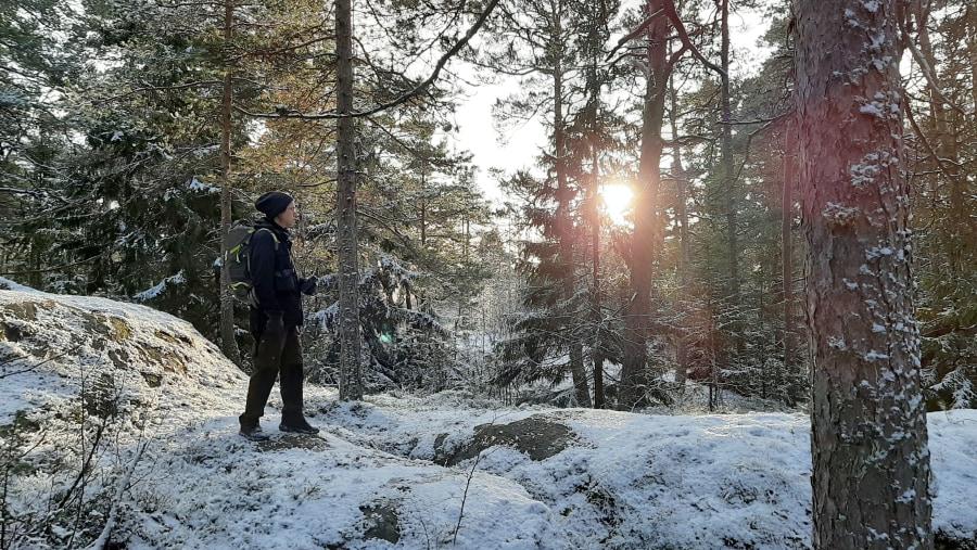 Winter archipelago excursion