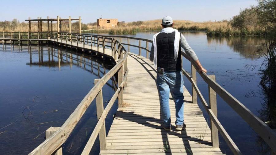 Al azraq reserve