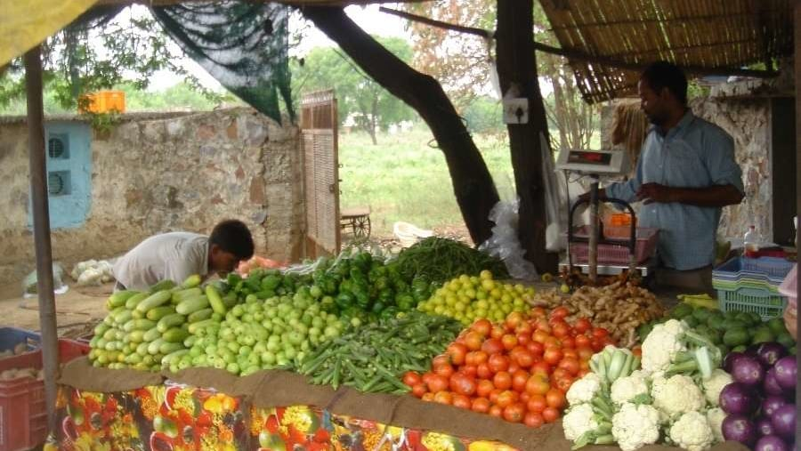 Farm-fresh organic veggies for you to chomp on (after washing, ofcourse)