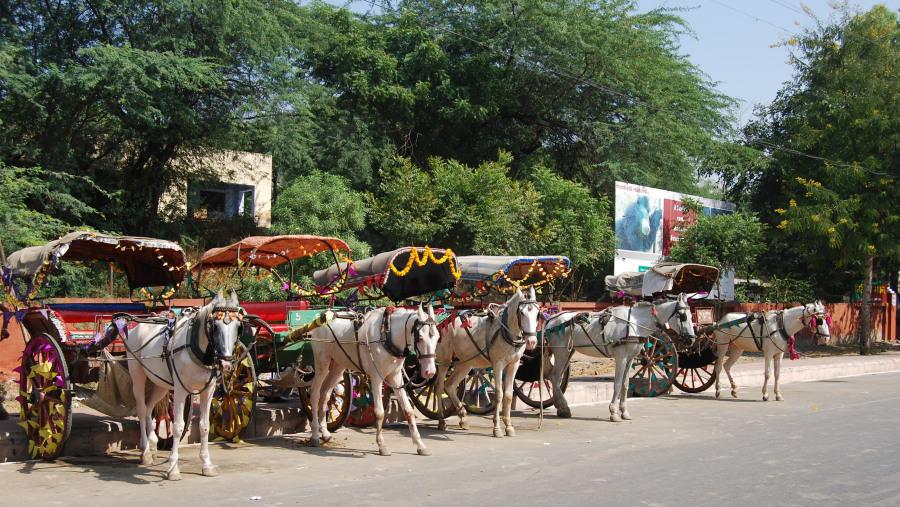 Agra Tours