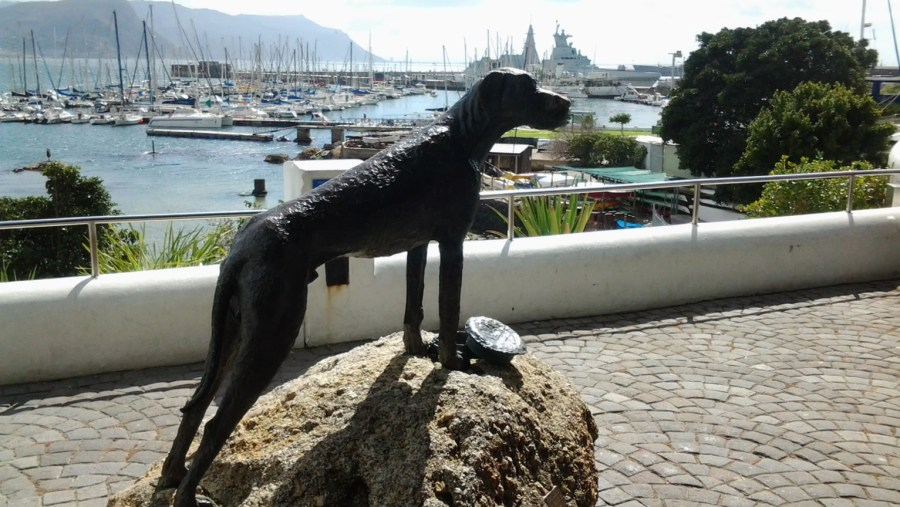 Simons Town (Just Nuisance)