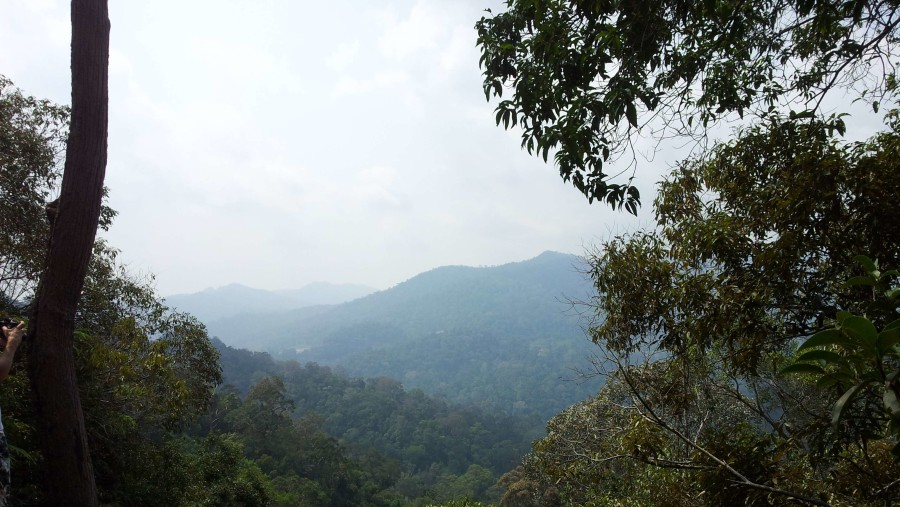 view from taman negara trail