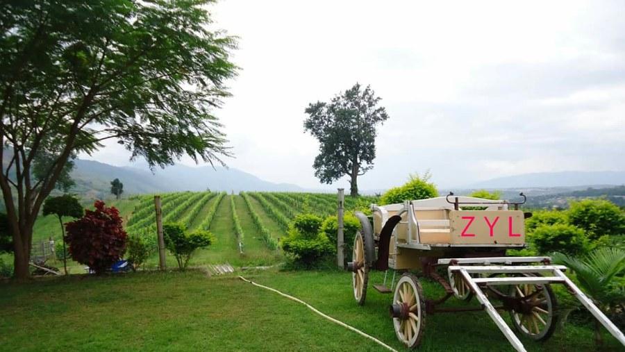 Ayetharyar winery