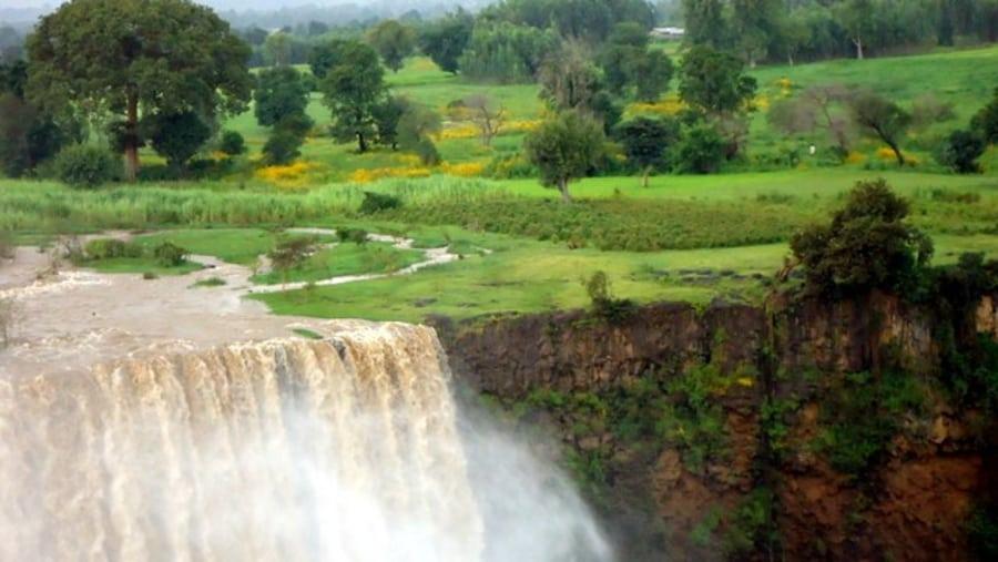 Nigist Ethiopian Tours
