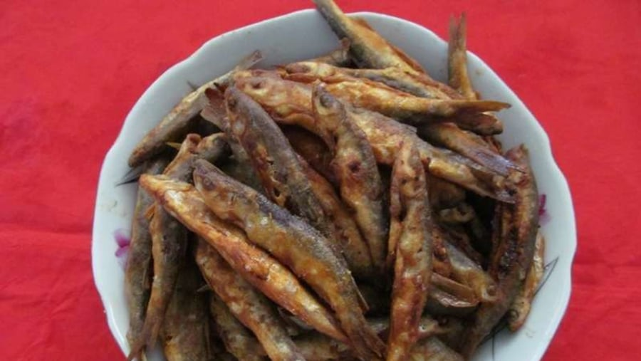 Plaşitsa - Struga bölgesine özgü balık çeşidi