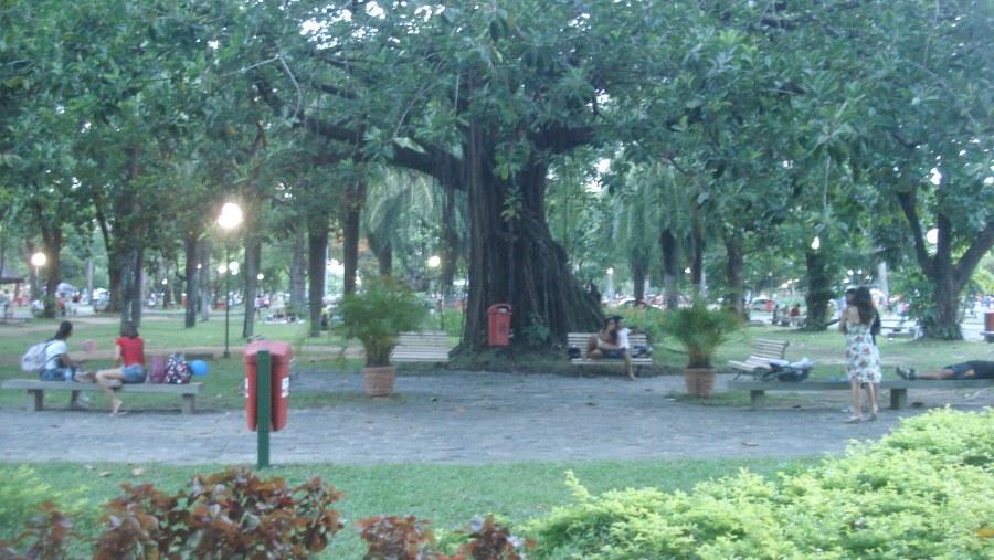 Parque da Jaqueira (Jacktree Park)