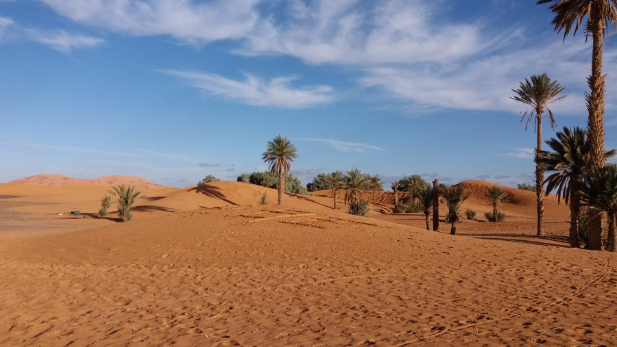 Desert Tour and Guide of 15 days around Morocco.