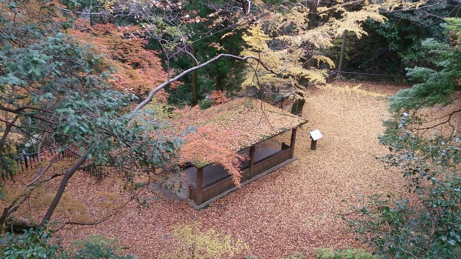 Narutani Valley in autumn