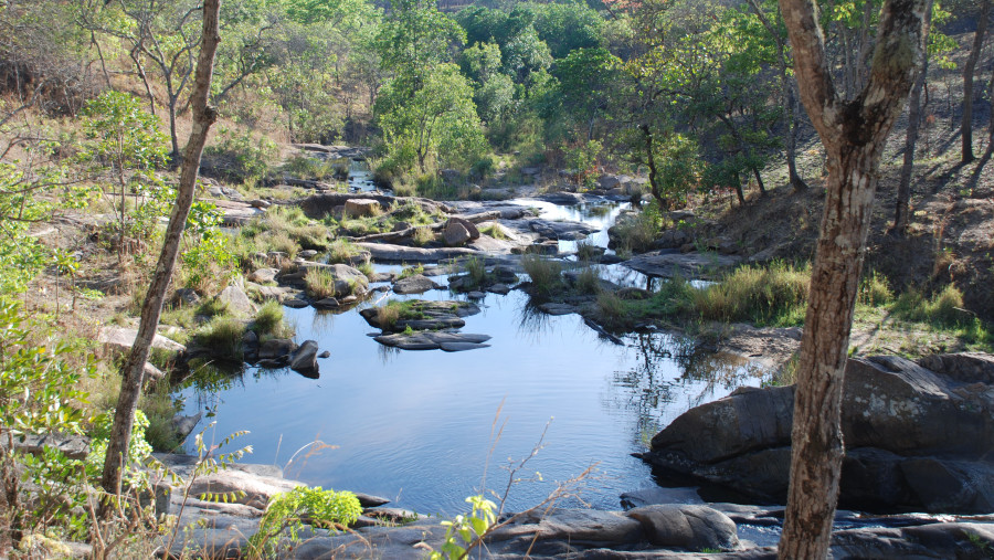 A stream in Dzalanyama Forest reserve,