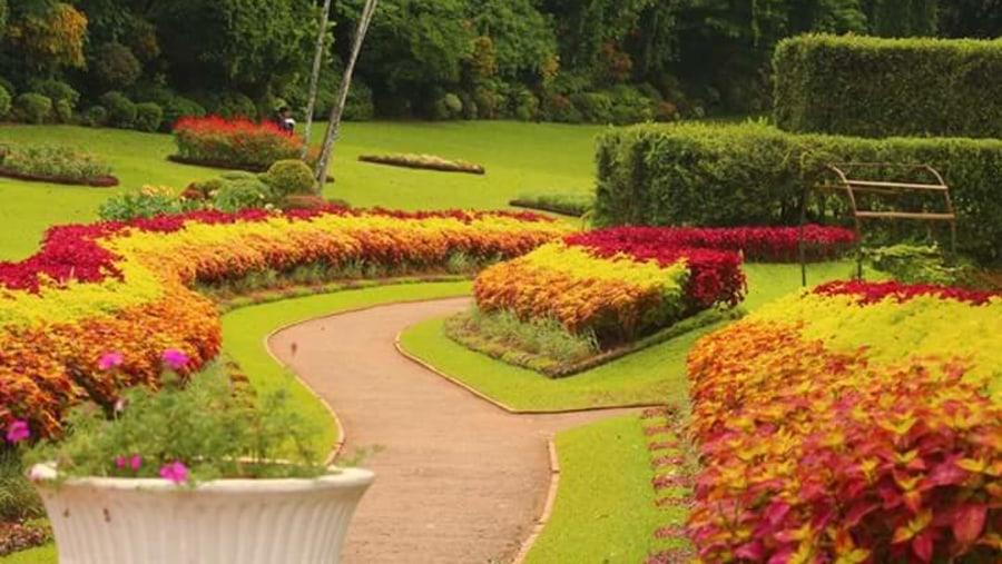 Peradeniya garden
