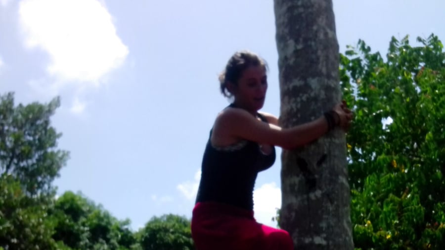 A spice girl on spice tour climbing a coconut tree, no monkeys so it takes U n I