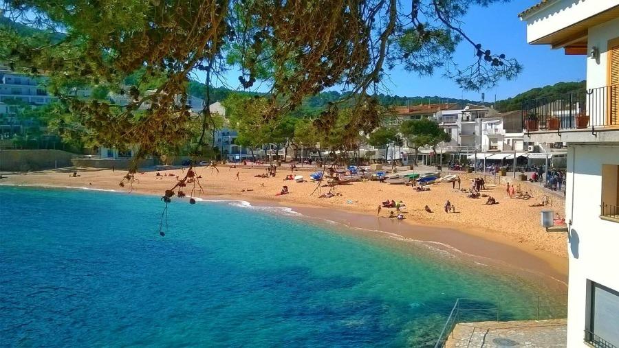 Tamariu Beach in Costa Brava