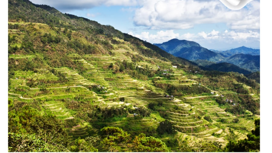 Banaue Rice Tterraces