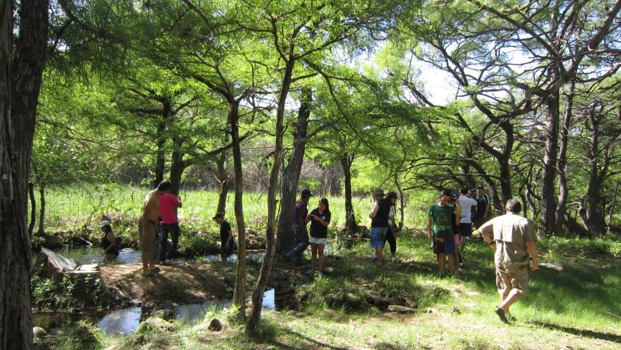 Nacimiento del Rio de Cenotes Candelaria Chacaj