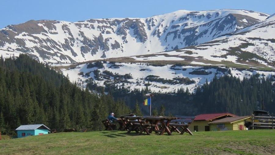 Mountain View Rodnei