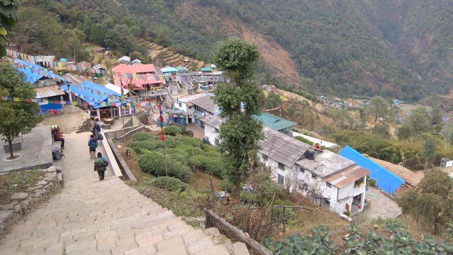 Debendra Acharya