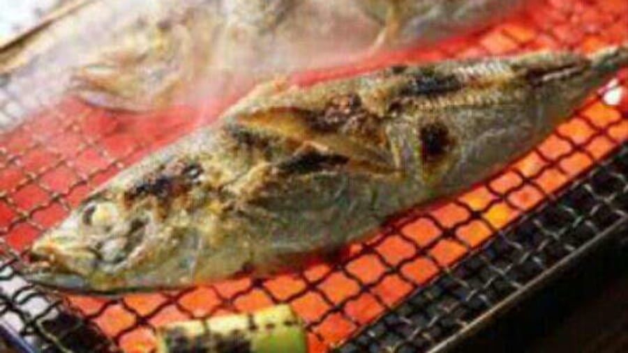 Grilled fish in the desert