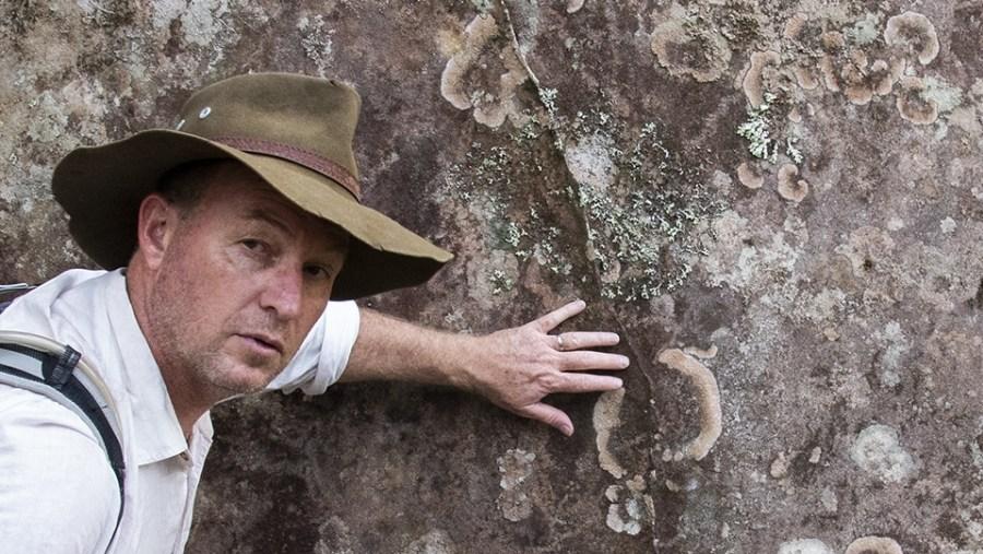 Learn about the Australian bush