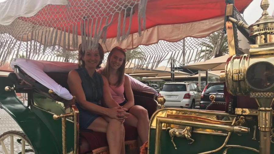 Horse carriage tour