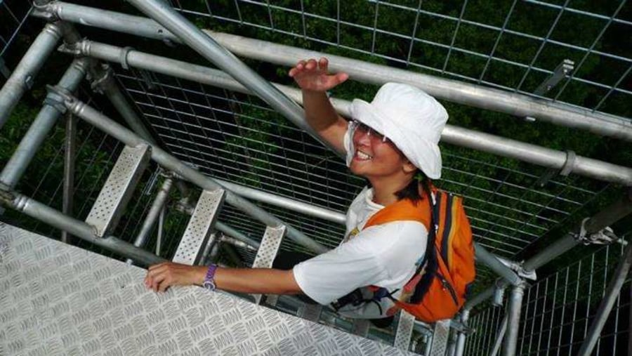 Climbing the steel structures