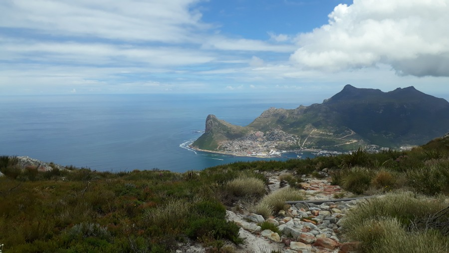 Hout Bay from above