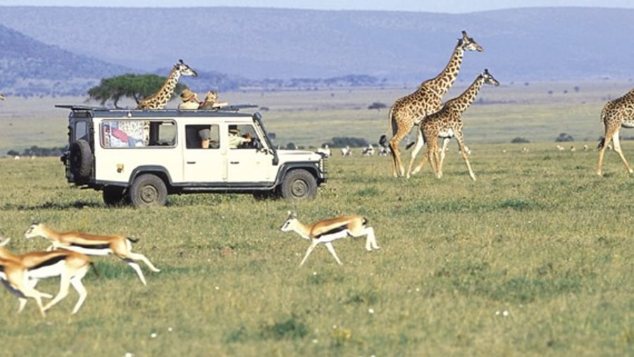 Game drive in Serengeti by Inside Africa Budget Safaris
