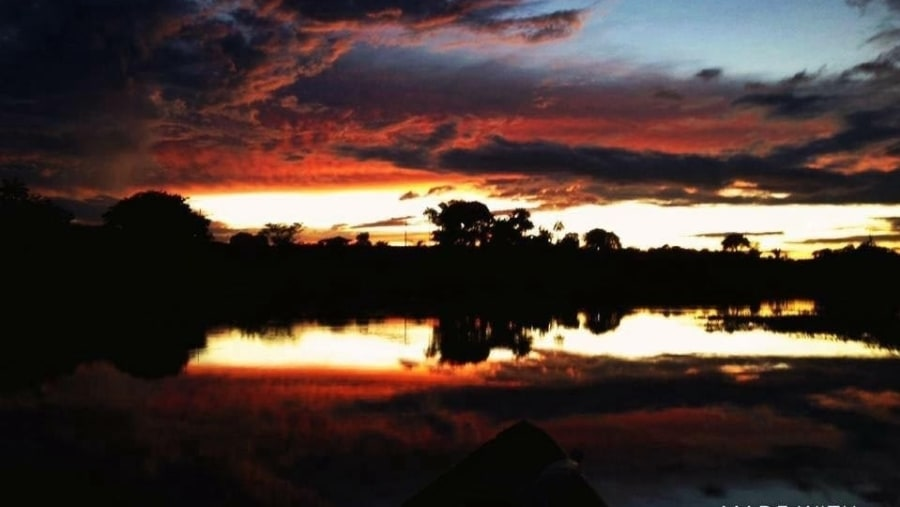 At Sunset in the Amazon