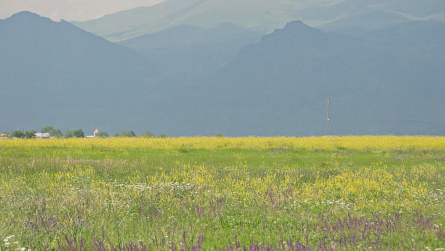 Armenia Countryside